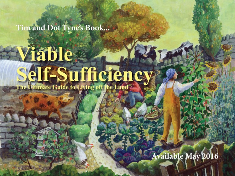Viable Self-Sufficiency cover image